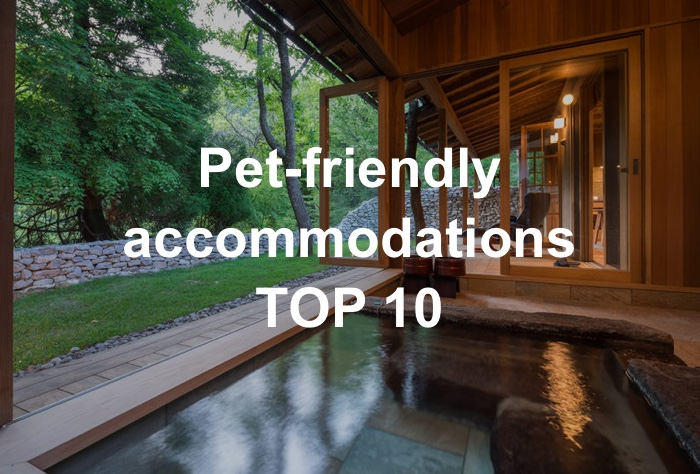 Pet-friendly accommodations TOP 10